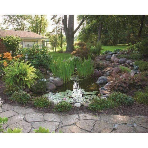 Aquascape 8 ft. x 11 ft. 1,000 Gal. Backyard Pond Kit 99765-pond kit-Aquascape-Kinetic Water Features