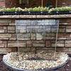 "Image of Atlantic Color Changing Colorfalls 6"" 12"" 24"" 36"" Sizes-Waterfall-Atlantic Water Gardens-Kinetic Water Features"