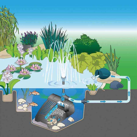 Oase Filtral UVC 700 All-in-One Pump, Filter and UV Light-Filters, UVC & Aeration-Oase-Kinetic Water Features