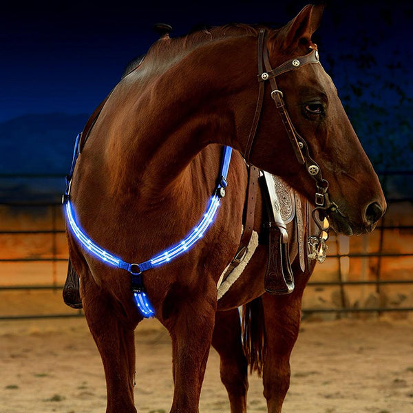 Bricole cheval LED