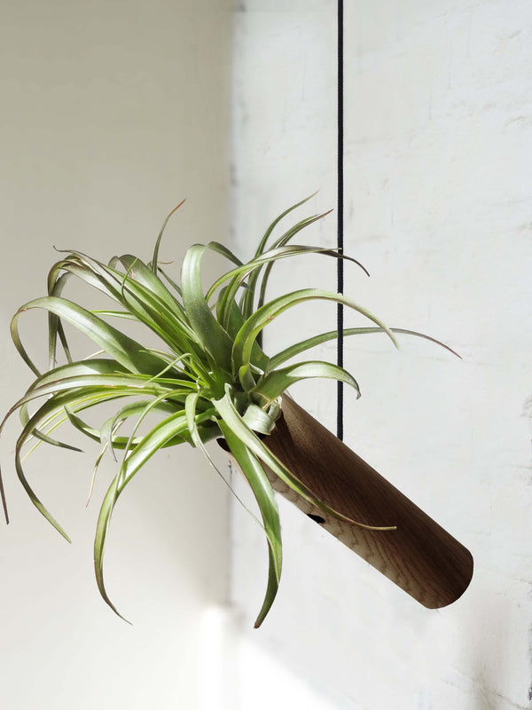 Hanging Cylinder - Dark Oak