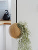 Hanging Sphere - Light Oak