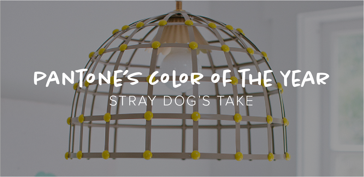 Pantone's Color of the Year: Stray Dog's Take