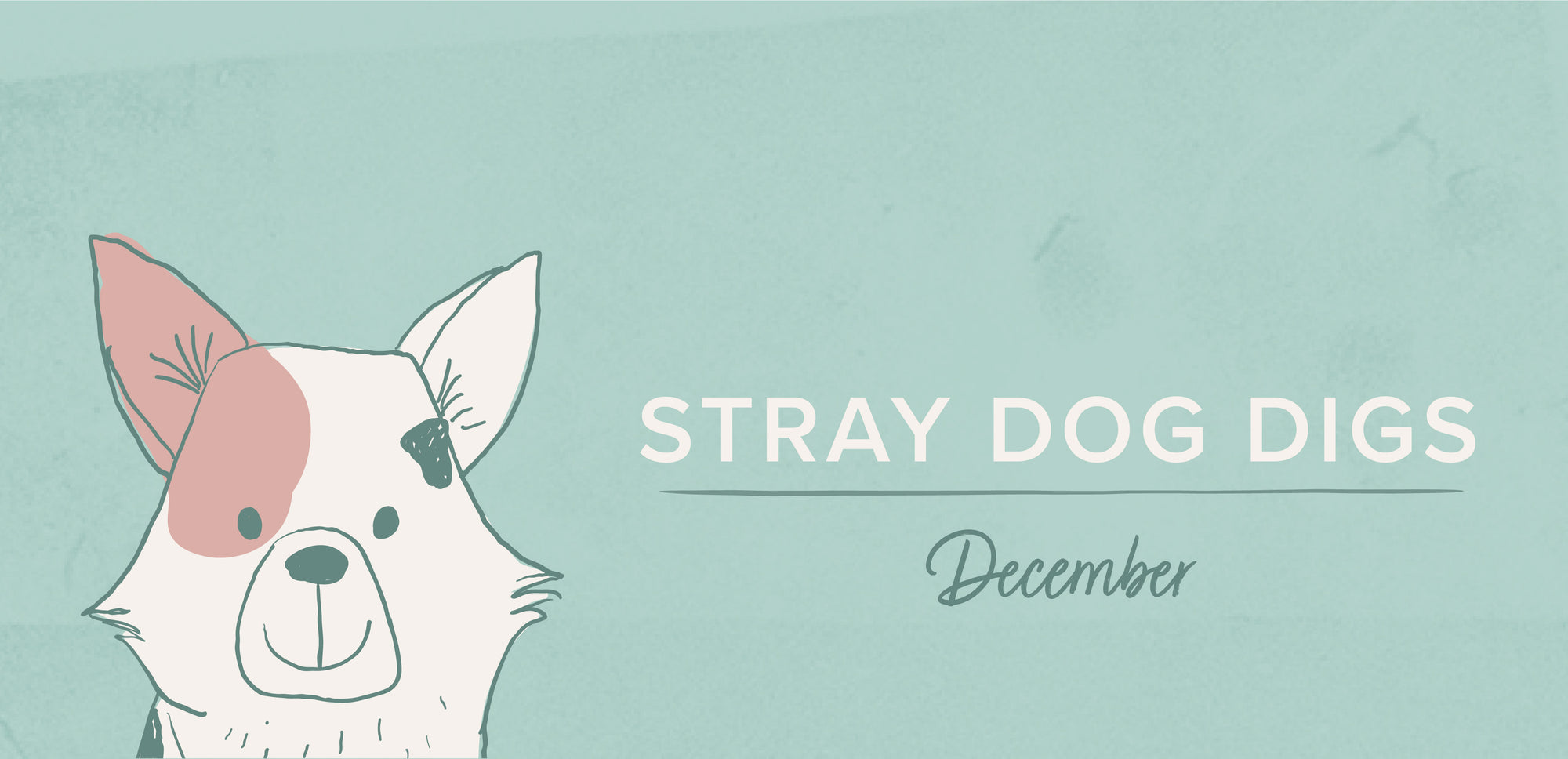Stray Dog Digs: December