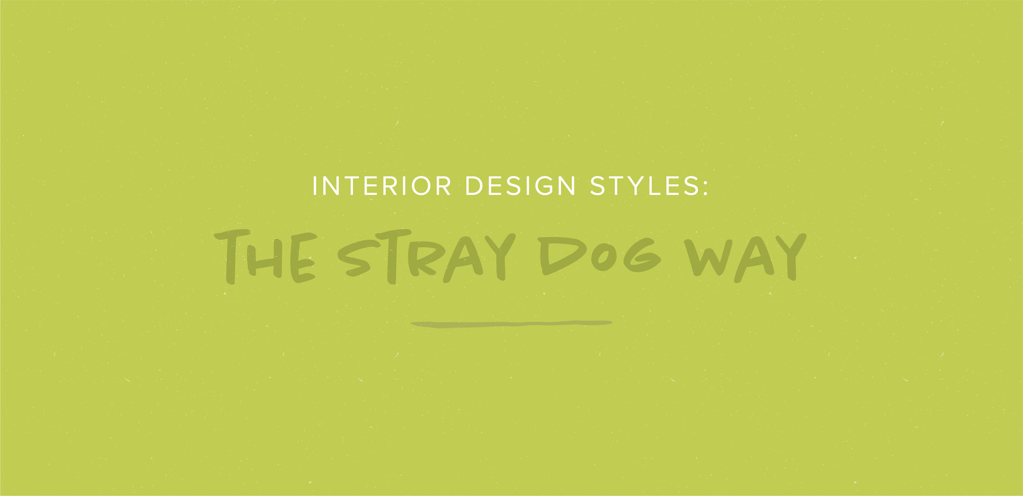 Interior Design Styles: The Stray Dog Way