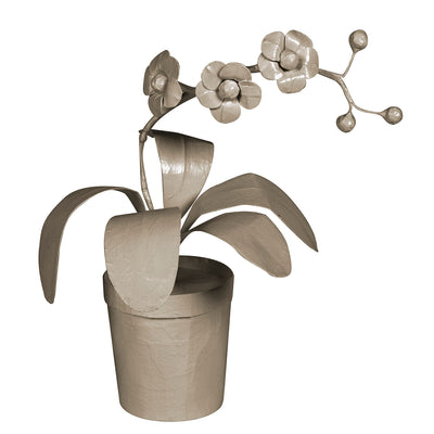 Potted Orchid in papier mache painted gray