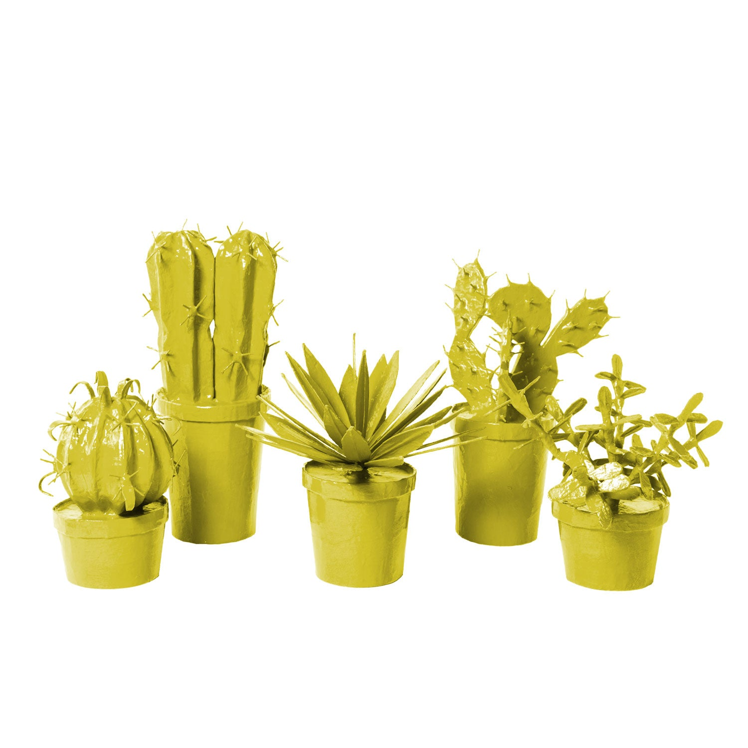 catus in pots made from papier mache