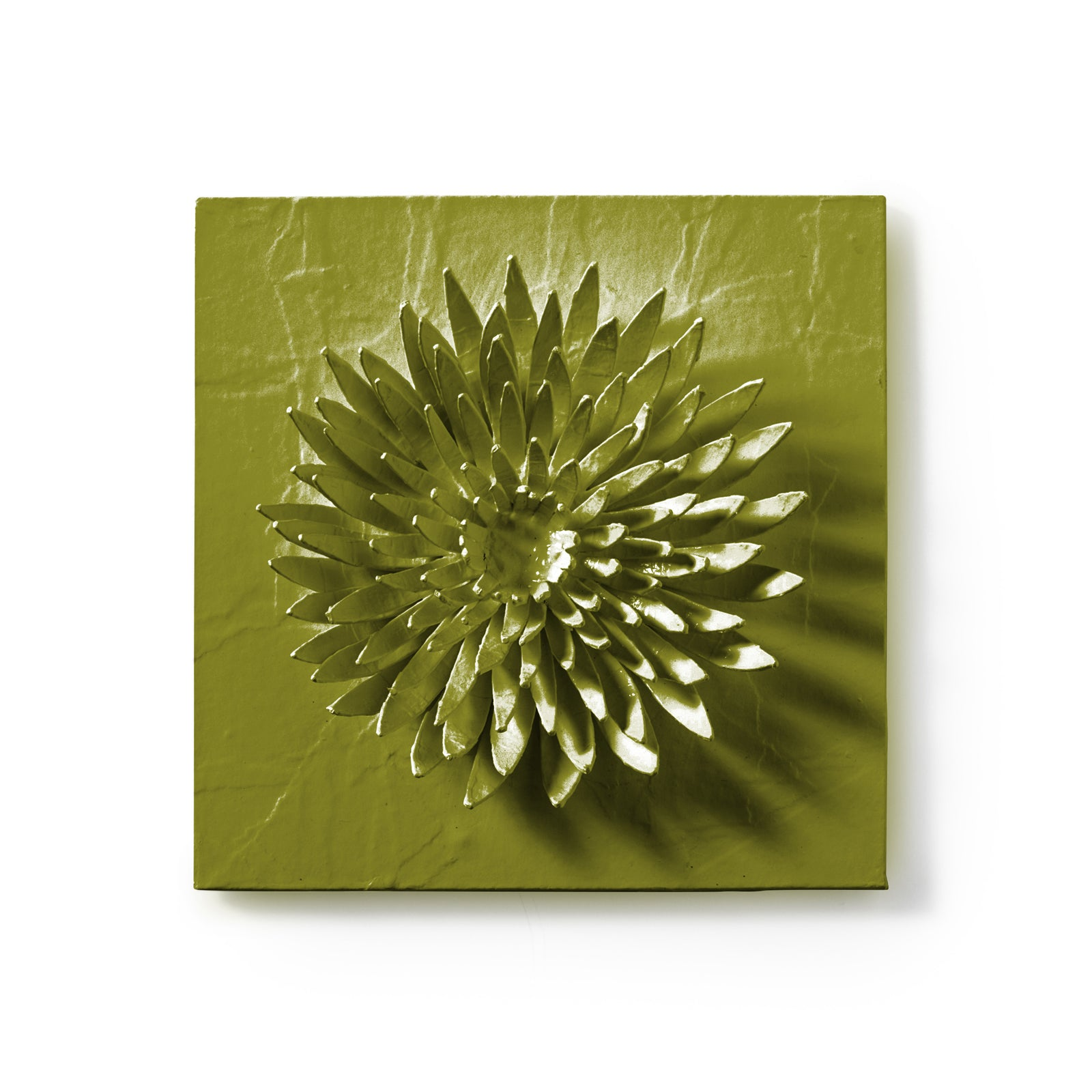 Chrysanthemum Flower Wall Tile by Stray Dog Designs