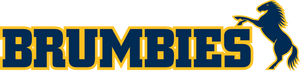 Brumbies Corporate Hospitality