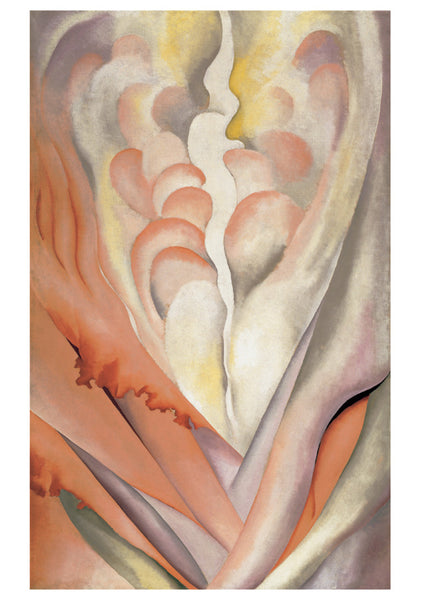 Georgia O'Keeffe Abstract Flowers Boxed Notes