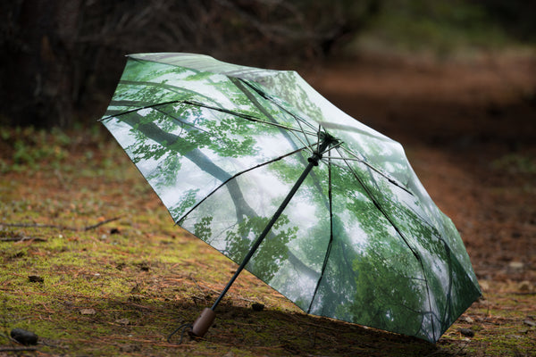 Misty Woods Umbrella