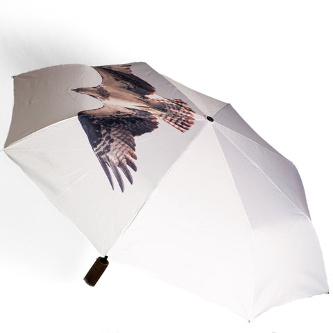 Osprey Umbrella