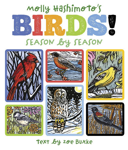Molly Hashimoto's Birds: Season By Season