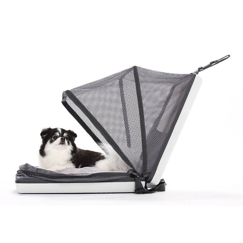 Carrie Premium Cat/Dog Pet Carrier