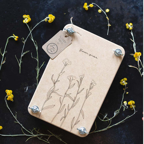 Sow n Sow Flower Press 'Billy Buttons'