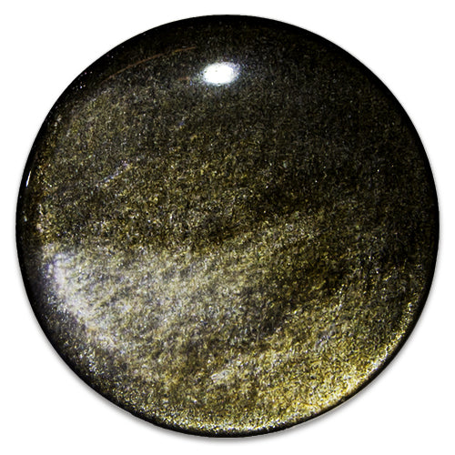 Metal Mafia Gold Obsidian Plugs - PAIR - (PGOS)