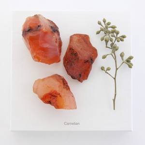 Carnelian Raw Crystal