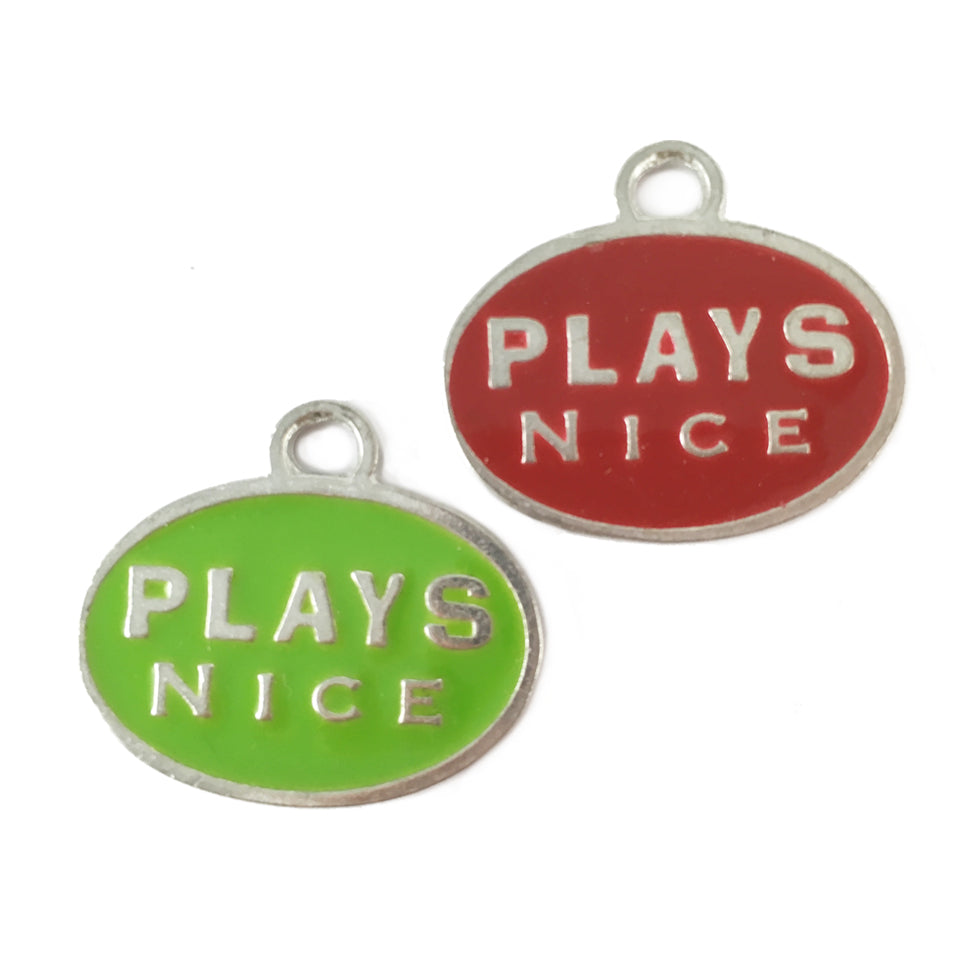 AT13-Plays Nice Pet Tag