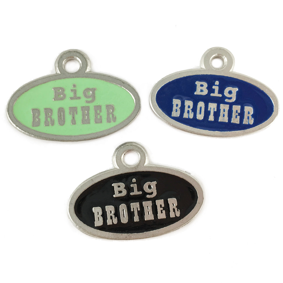 AT83-Big Brother Pet Tag