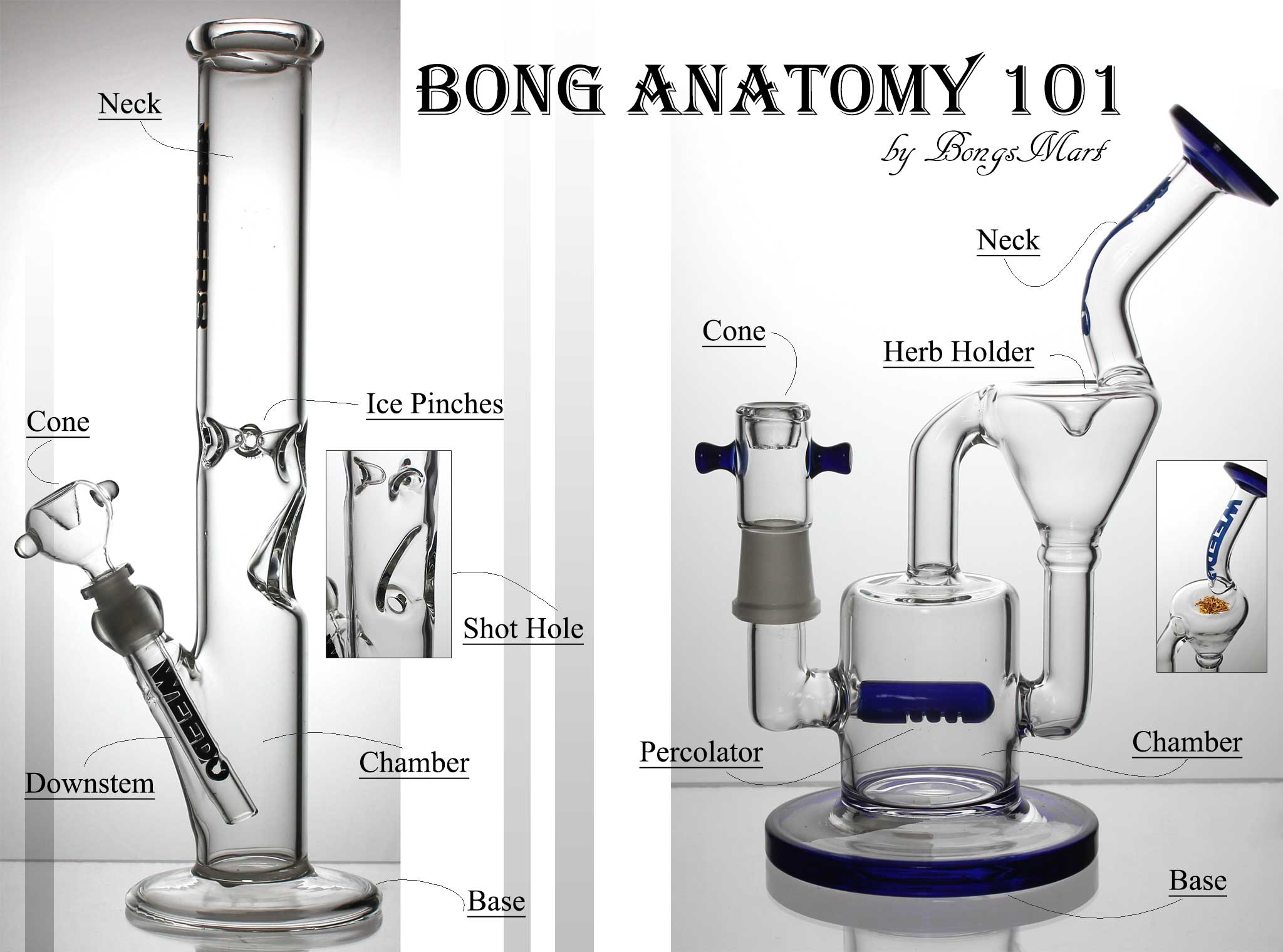 Bong Anatomy 101: An Overview