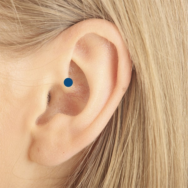 Daith piercing placement