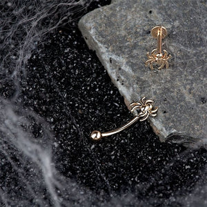 Spider 14K Gold Curved Barbell Eyebrow Ring