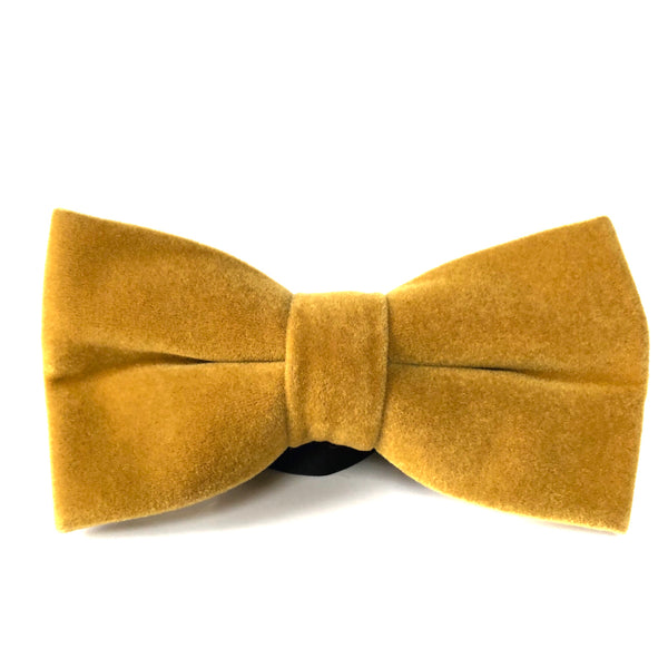 Simon Bow Tie in Mustard