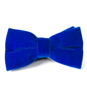 Simon Bow Tie in Blue