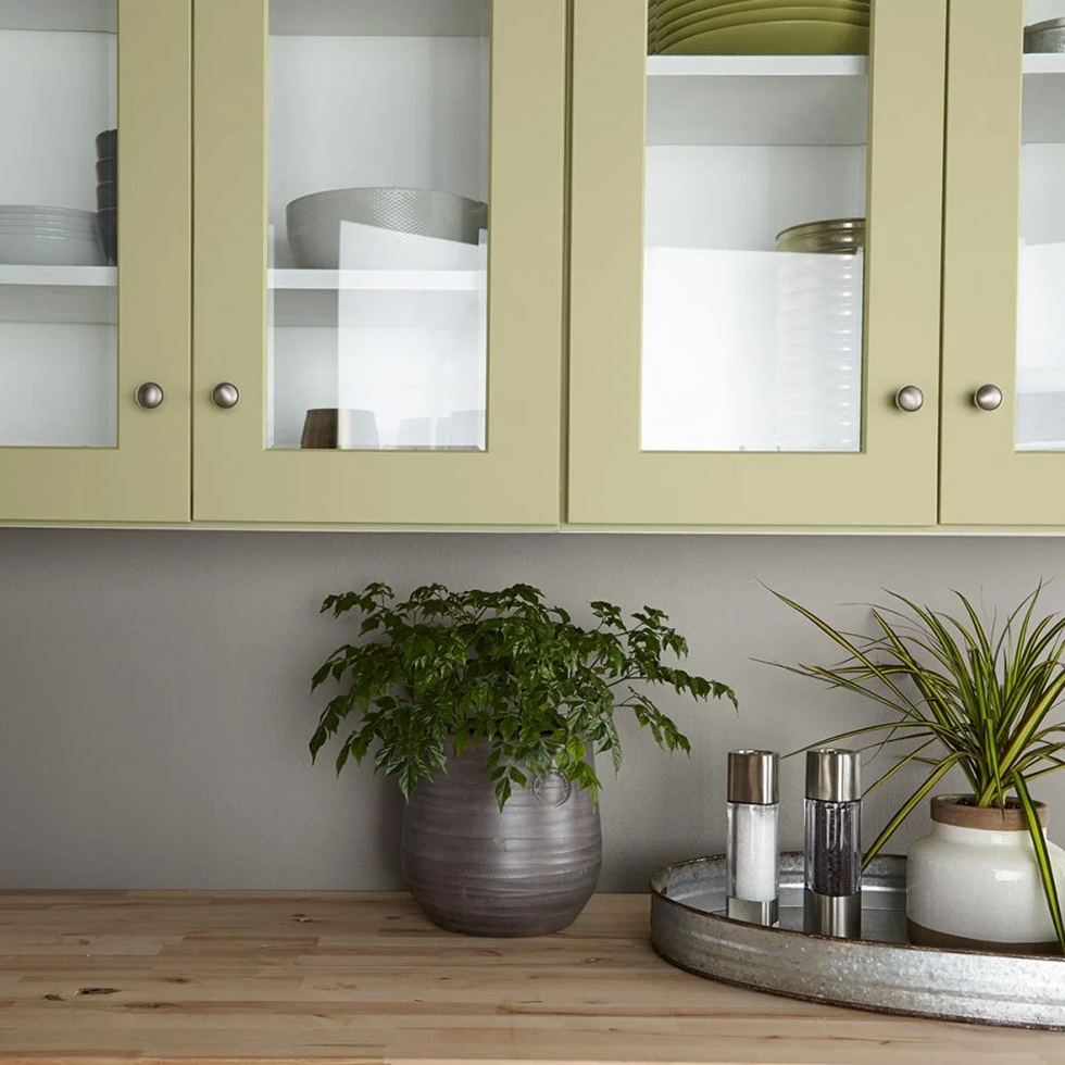 Behr Back to Nature Paint Color of the Year 2020 is a Leaf Green That Brings the Outside In