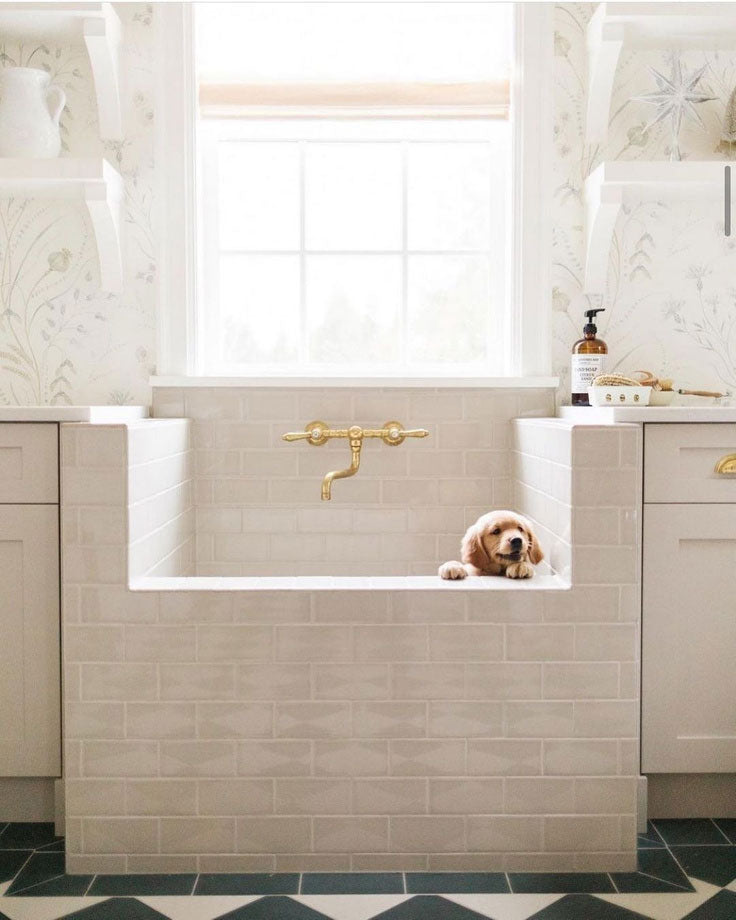 Dog Shower with White Ceramic Tiles for a Chic Farmhouse Mudroom