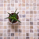 1X1 Fantasy Square Polished Marble Tile