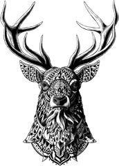 Ornate Buck Sticker
