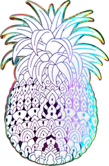 Rainbow Pineapple Pin