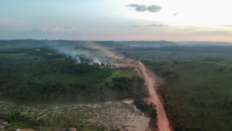 Congo Rainforest Losing Ability to Absorb Carbon Dioxide - Bad For Climate Change