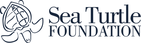 sea-turtle-foundation