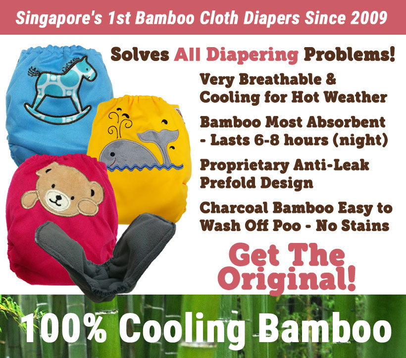 12pc Value Pack Raf Raf Bamboo Cloth Diaper + FREE GIFT!