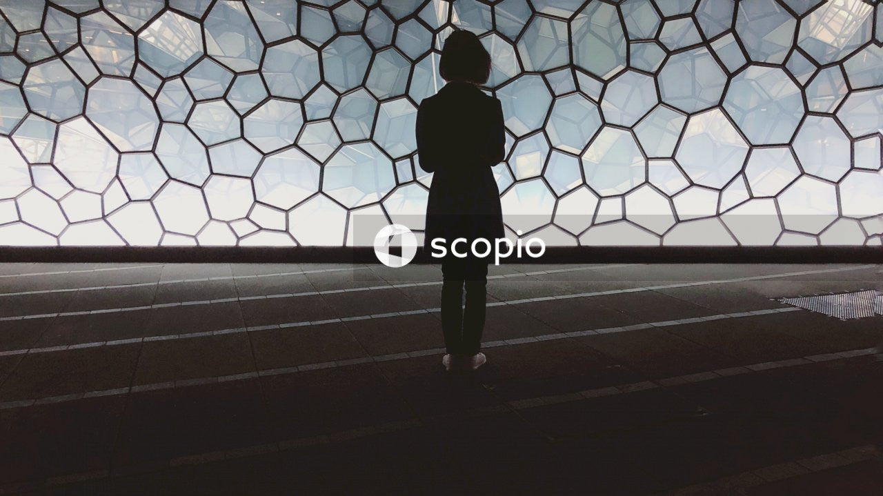 Silhouette of person standing in front of glass window