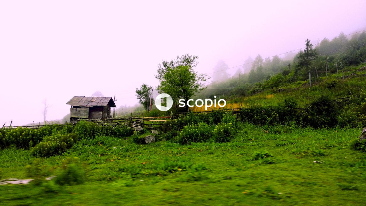 Brown wooden house on green grass field during foggy day