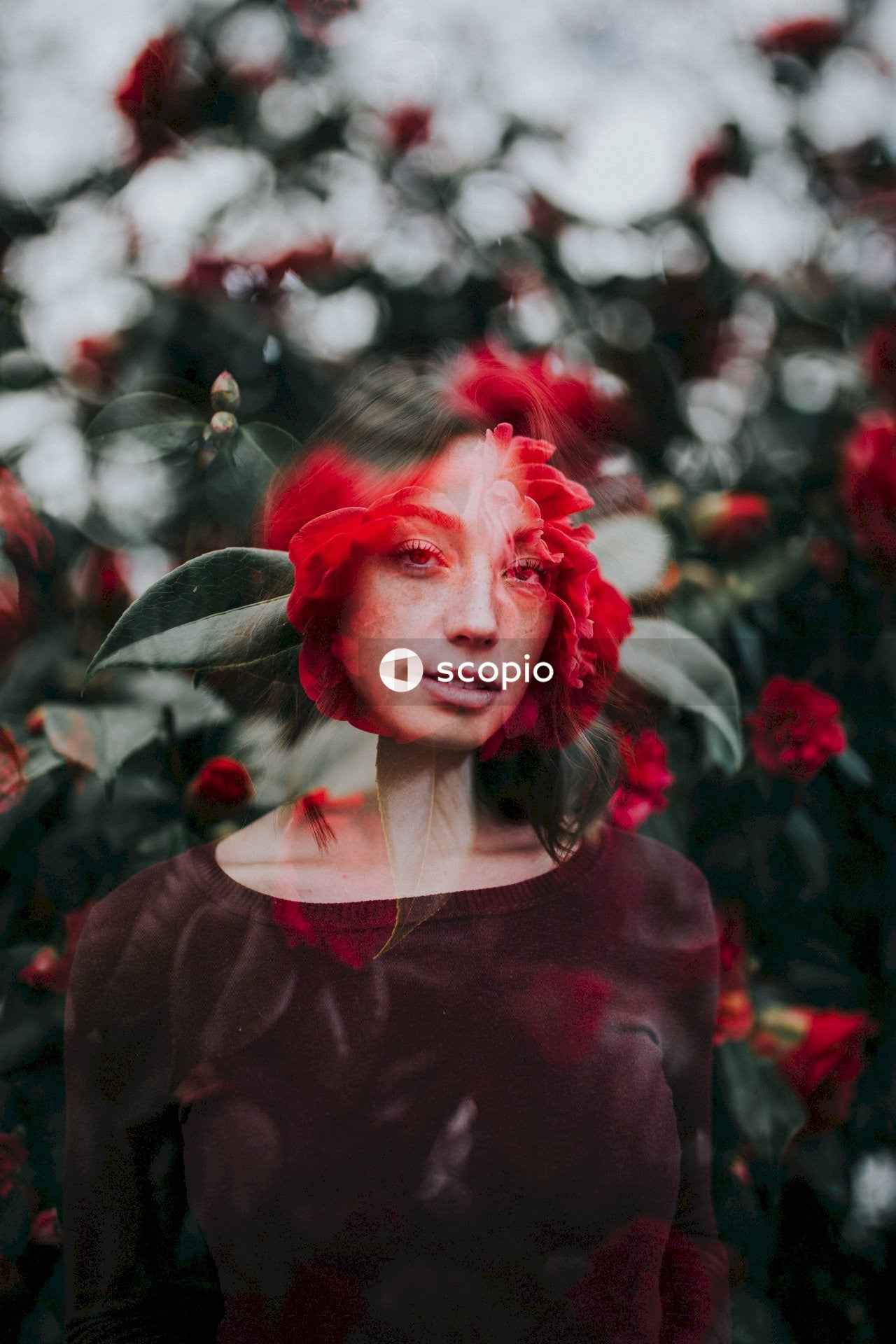 Woman in red long sleeve shirt standing near red flowers