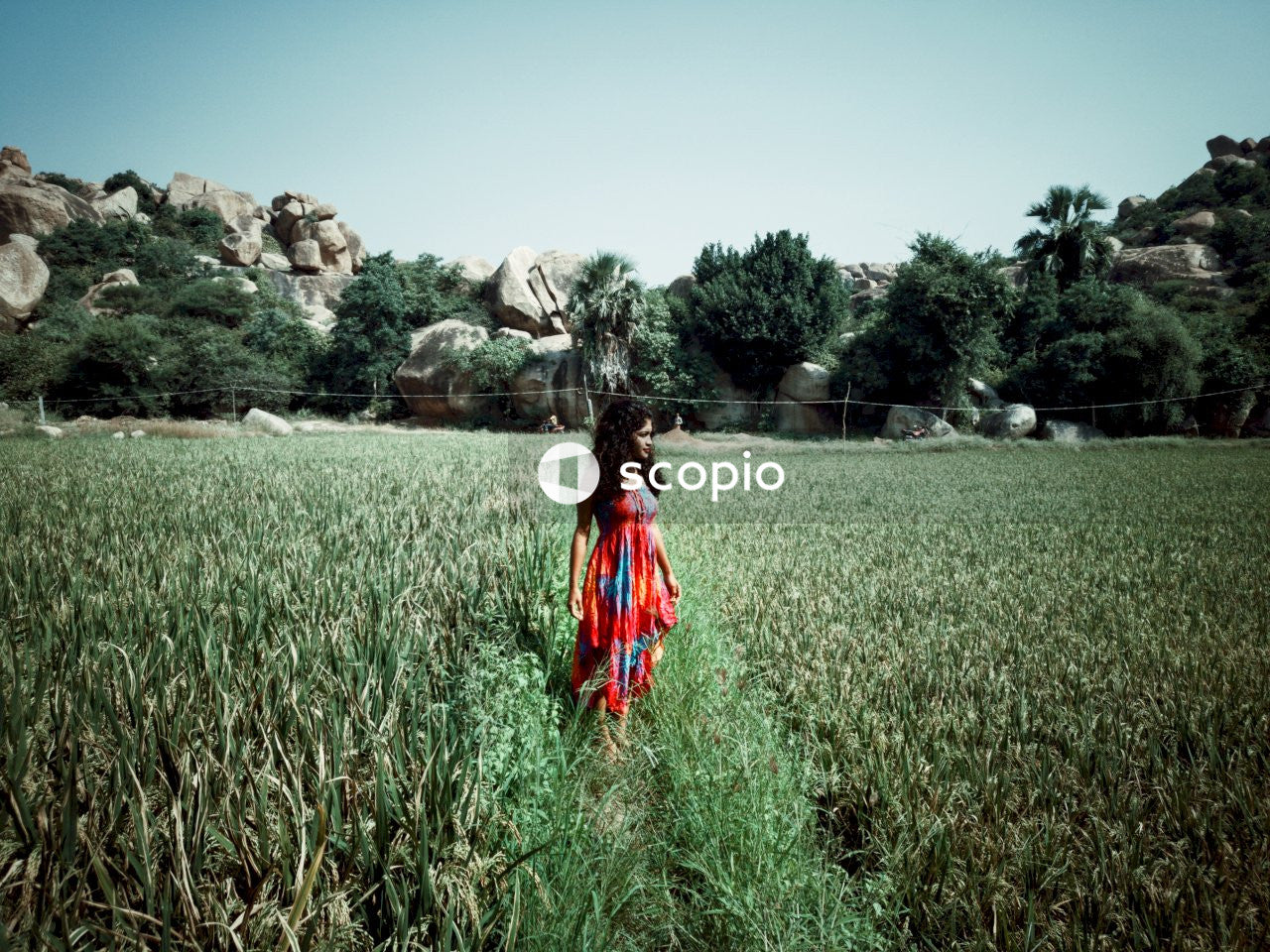 Woman in red and blue dress standing on green grass field