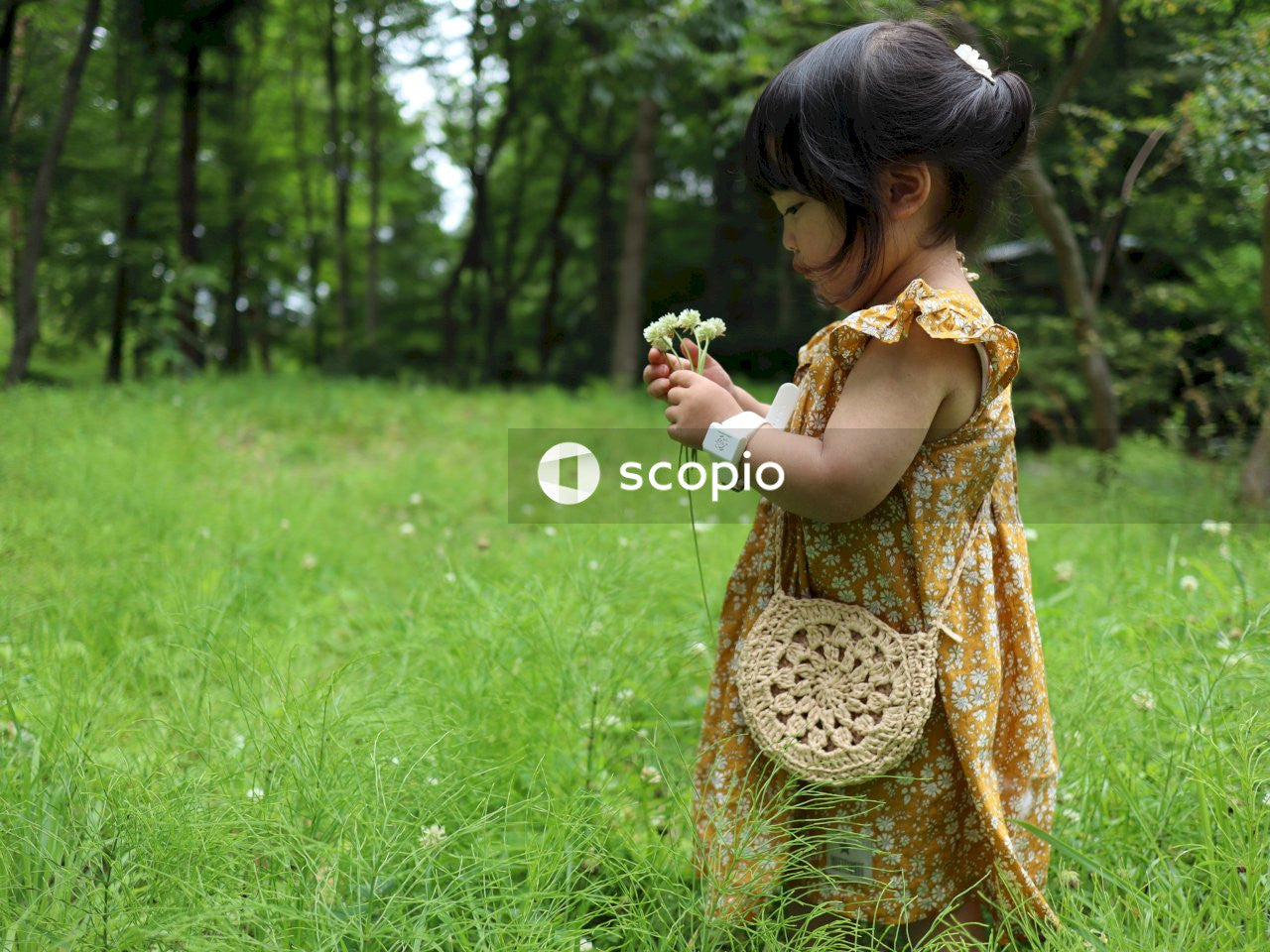 Child holding white petaled flowers while standing on green field surrounded with tall and green trees