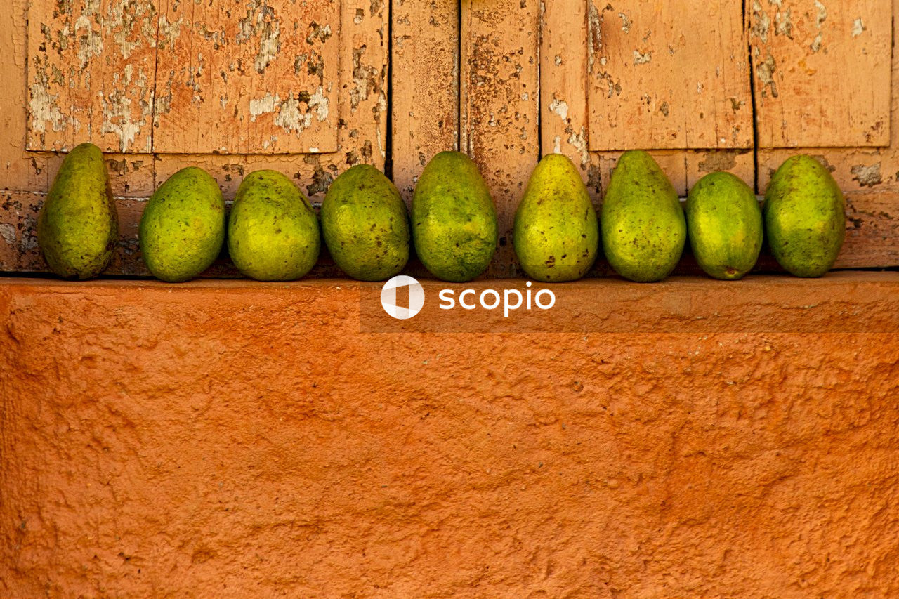 4 green fruits on orange concrete wall