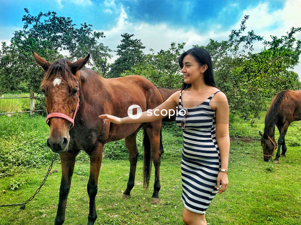 Woman in black and white striped dress standing beside brown horse
