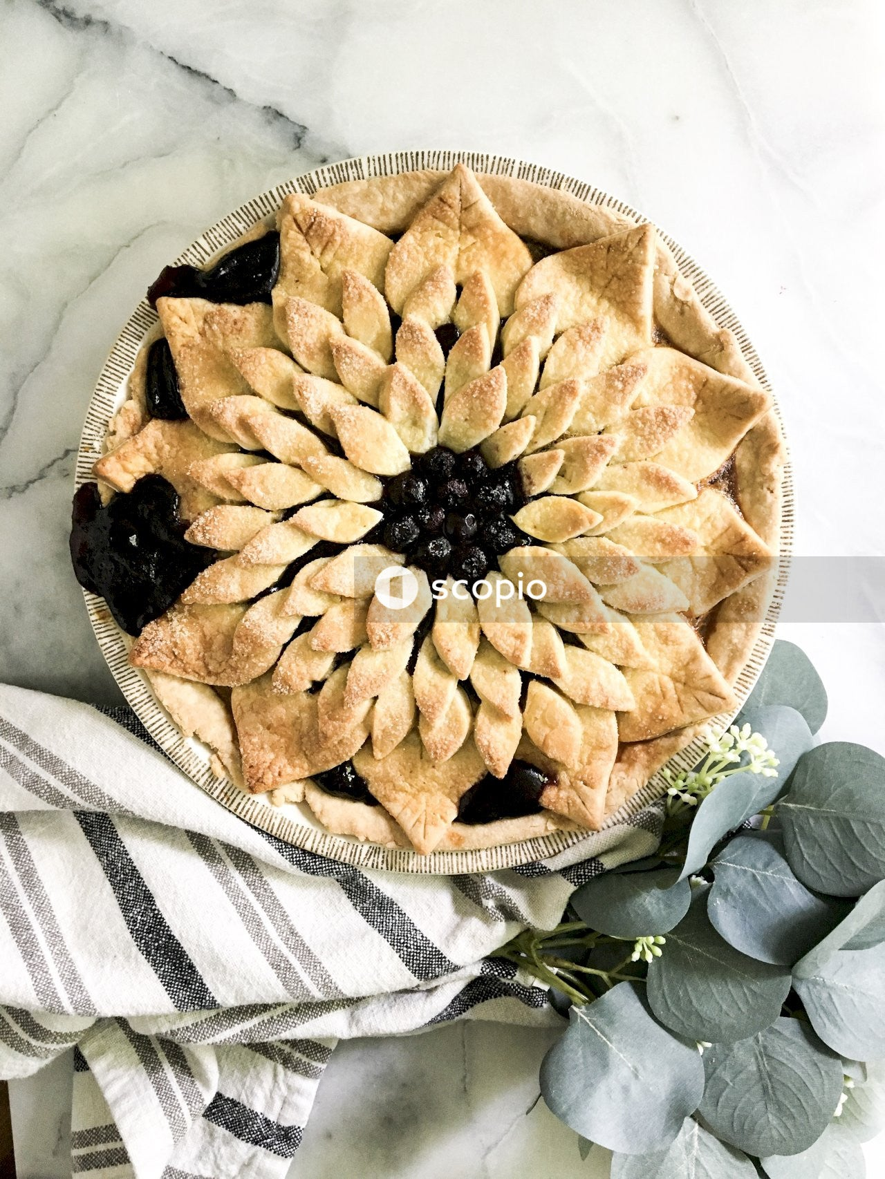 Black and brown round pie on white ceramic plate