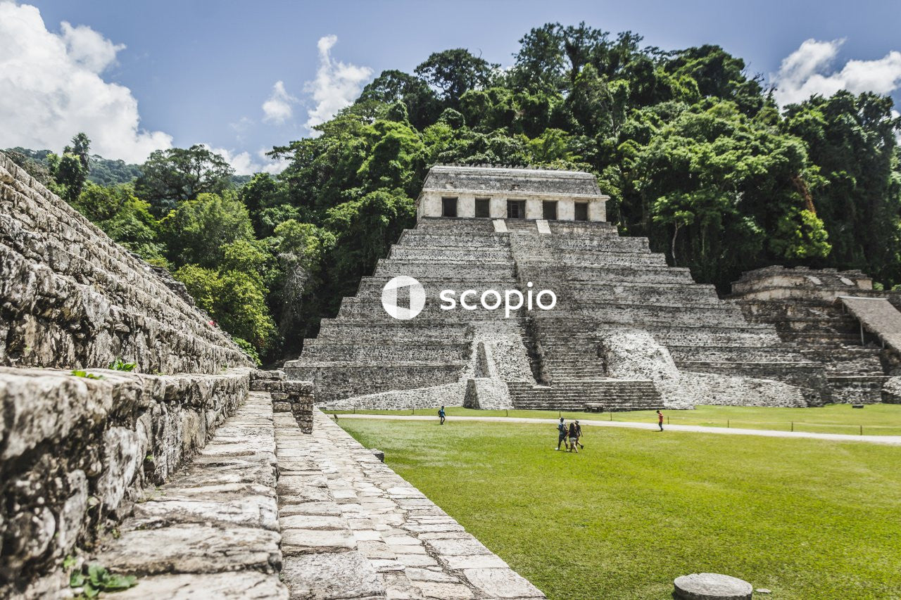 People walking near green field showing mayan ruins surrounded with tall and green trees under blue and white skies