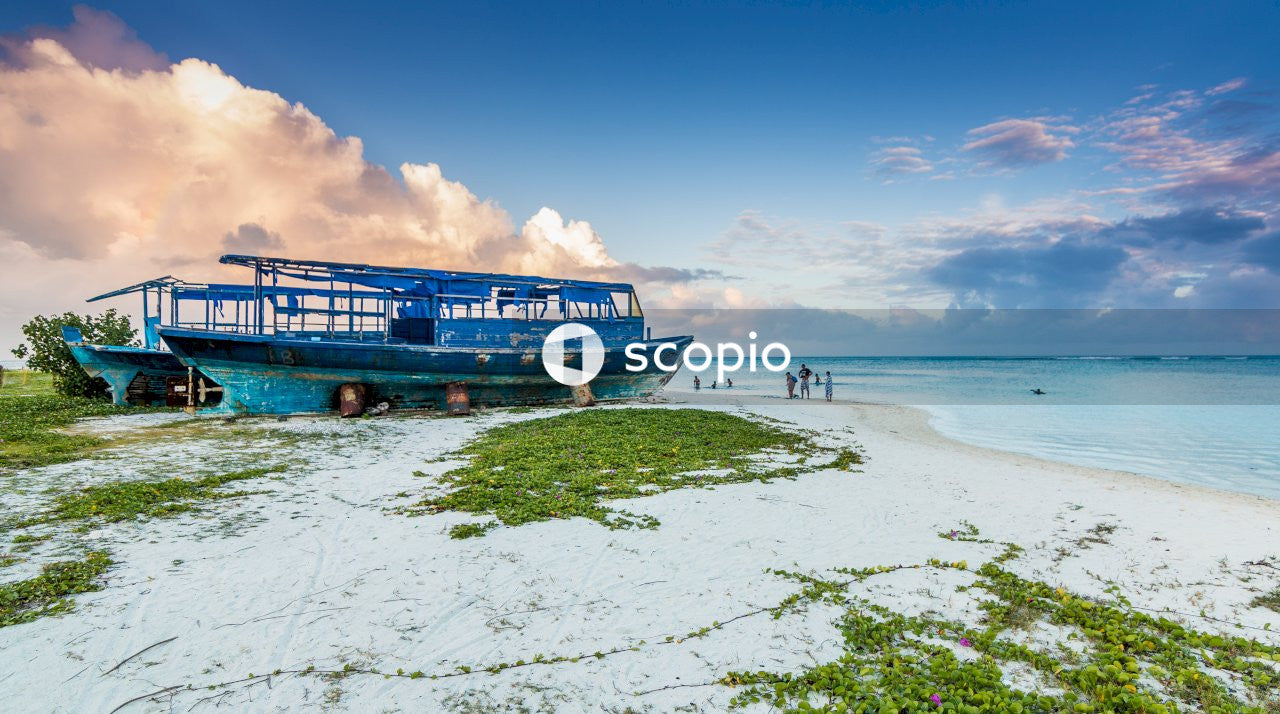 Blue and white boat on sea shore