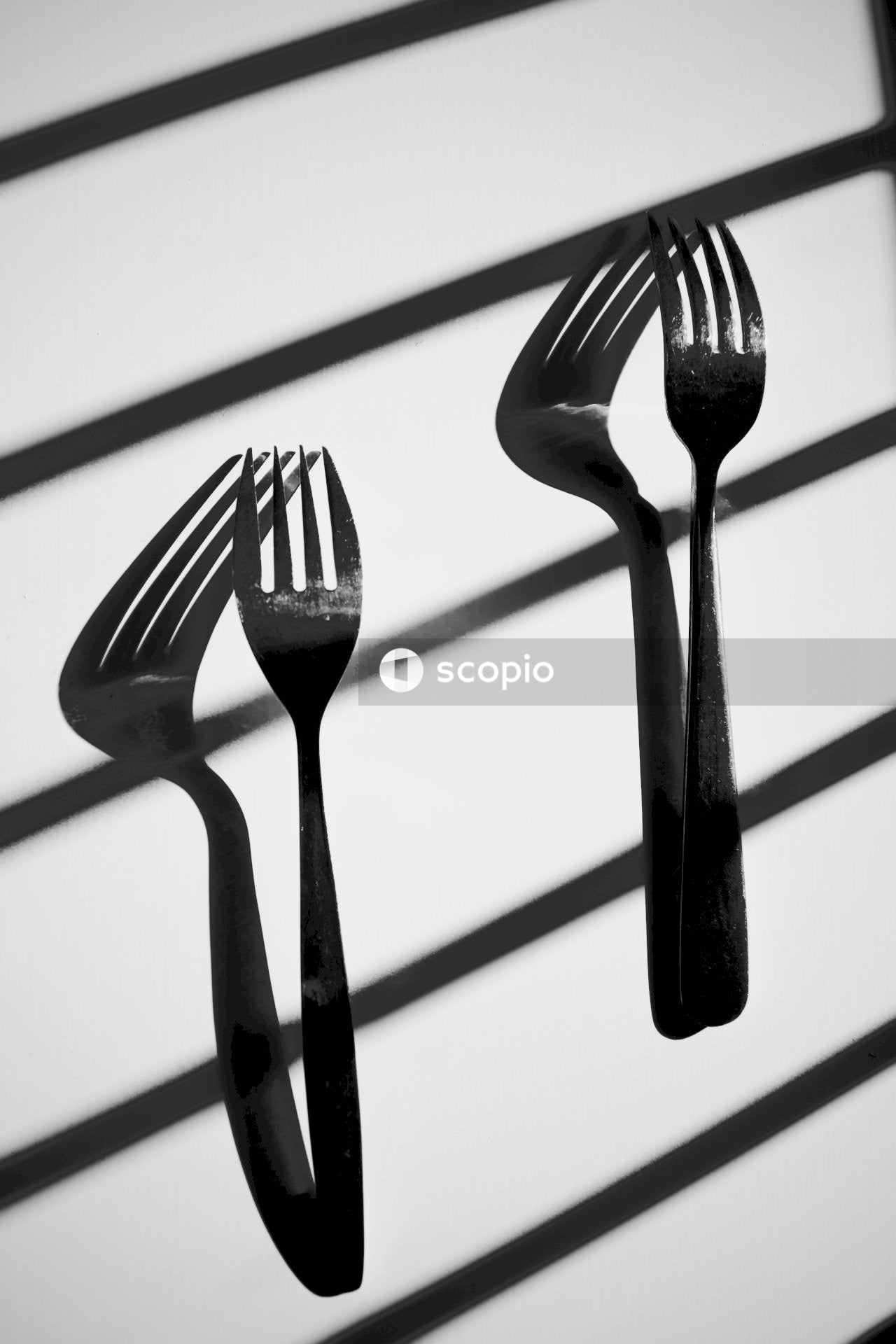 Stainless steel fork and spoon