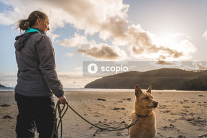 Man in gray jacket holding dog leash with dog on seashore