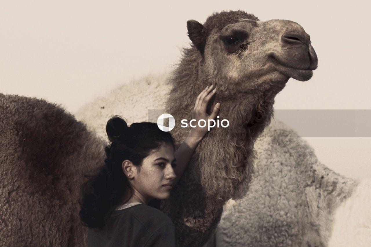 Man and woman kissing brown camel