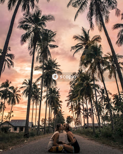 People sitting on bench near palm trees